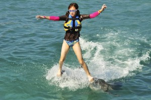Michelle surfs on Dolphins